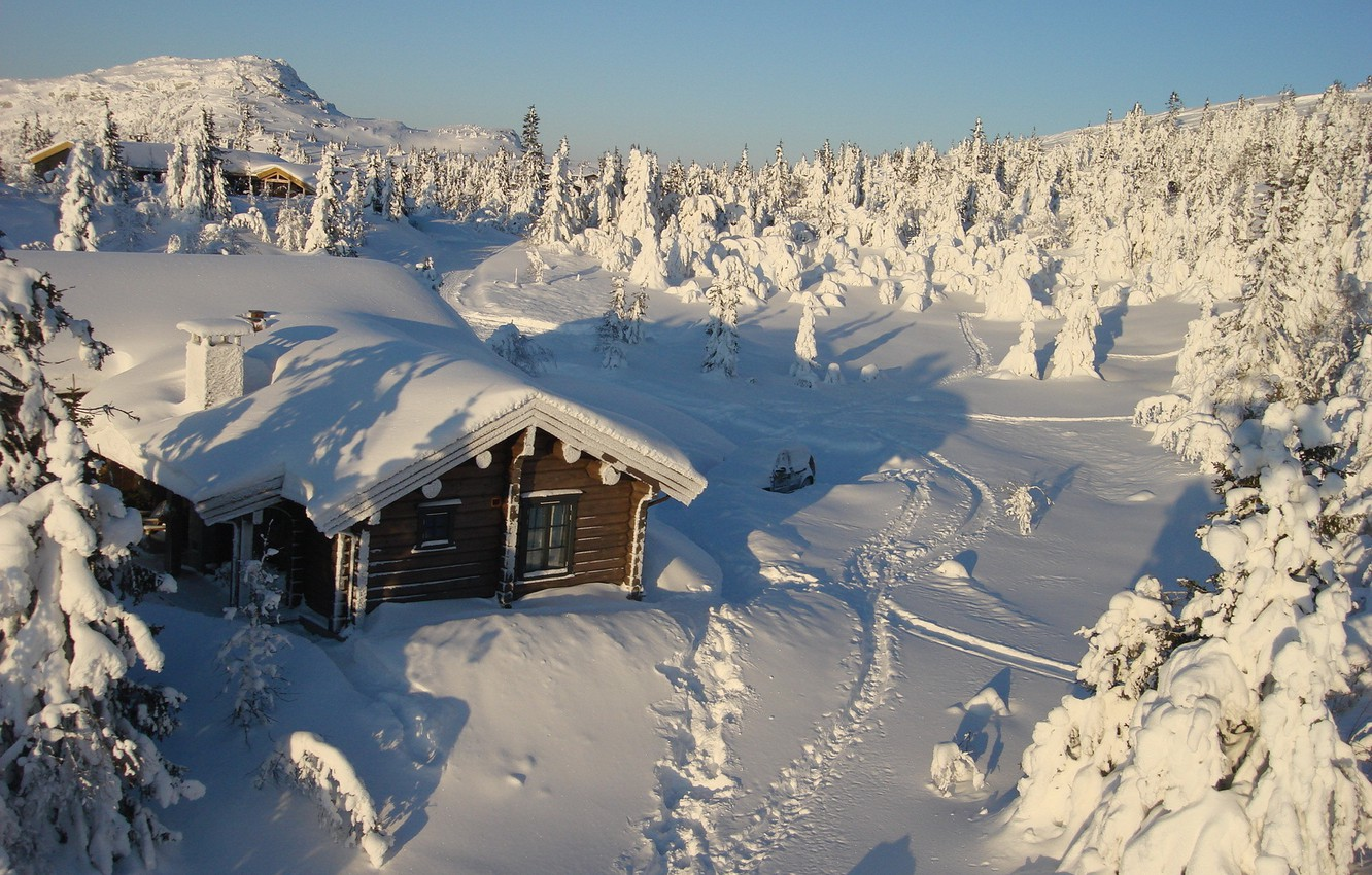 Photo wallpaper winter, snow, trees, nature, house