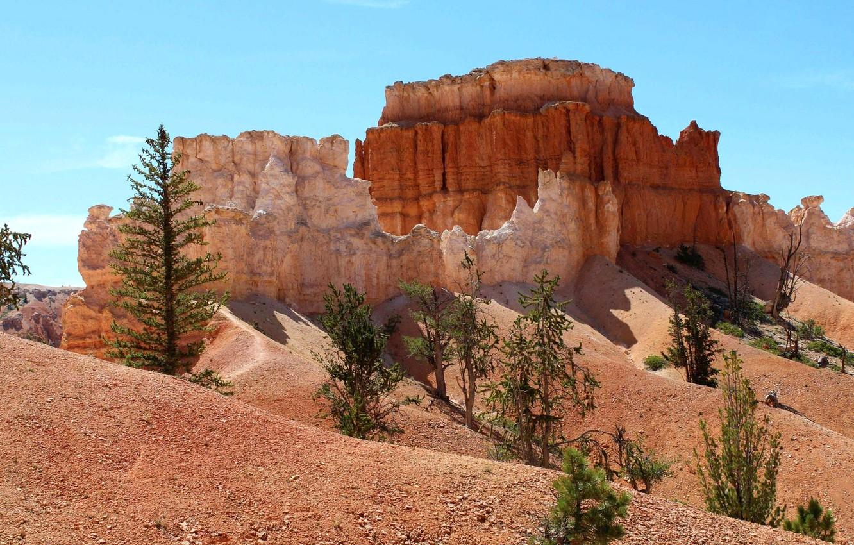 Photo wallpaper trees, landscape, mountains, rocks, canyon