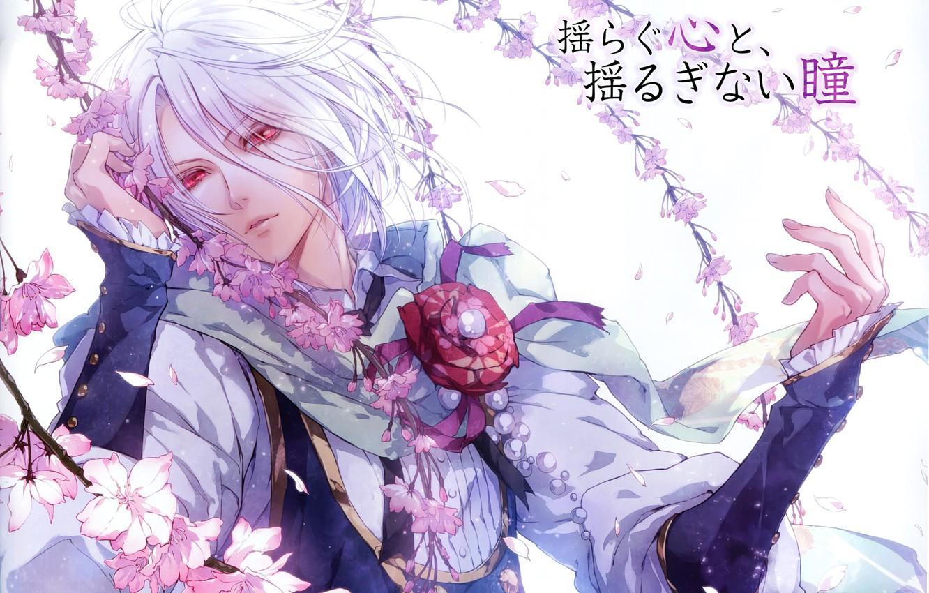 Photo wallpaper branches, Sakura, art, characters, guy, red eyes, white hair, queen of the flowers, usuba kagerou, …