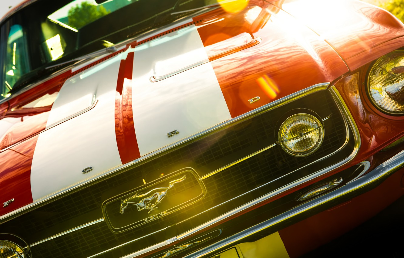 Photo wallpaper Mustang, Ford, Ford Mustang, Fastback, 1967 Ford Mustang Fastback