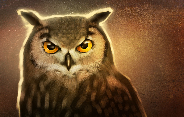 Photo wallpaper eyes, look, beak, art, owl bird