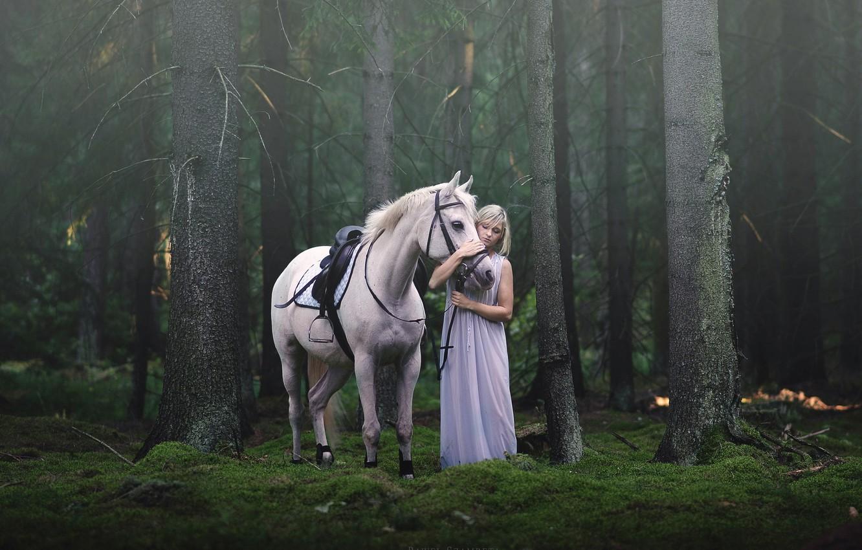 Photo wallpaper girl, background, horse
