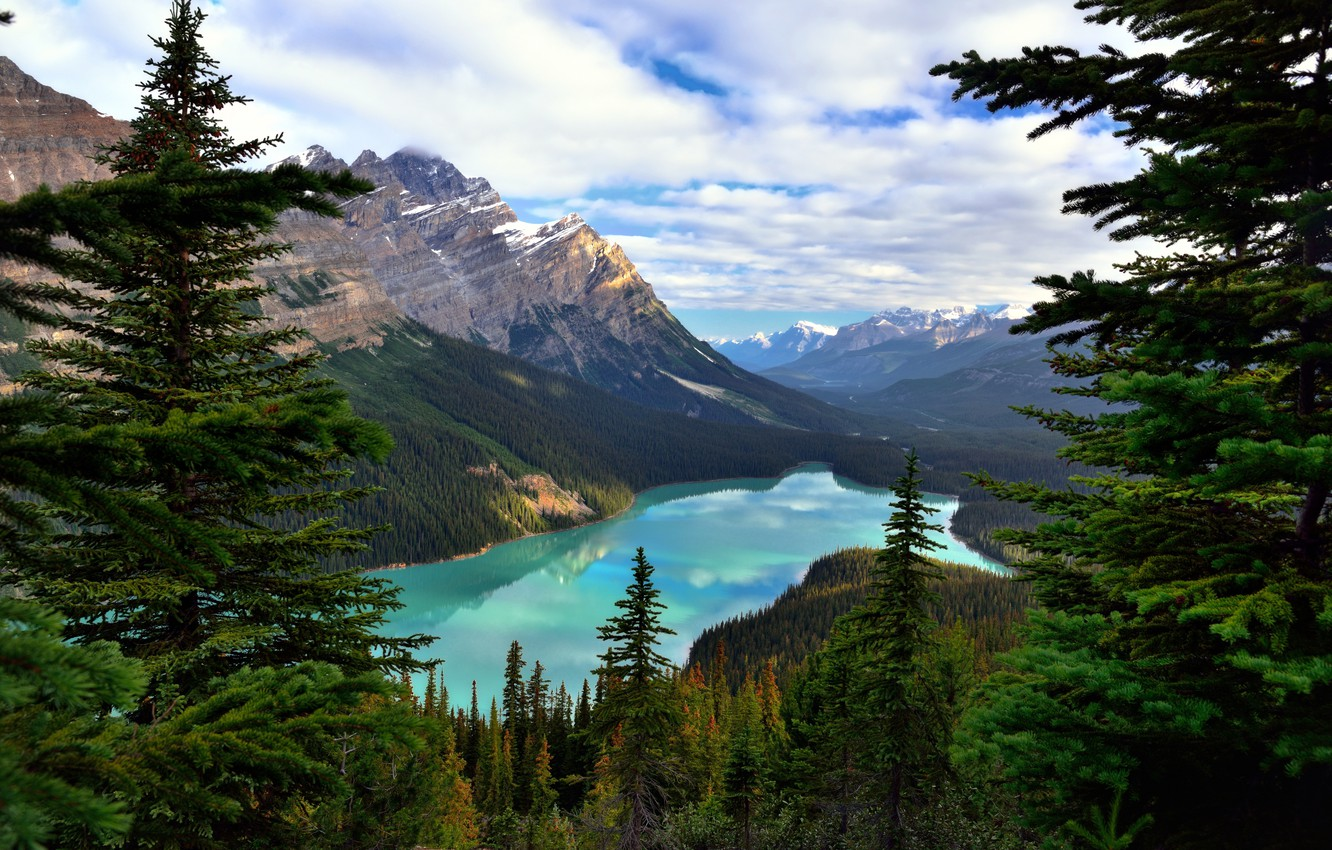 Photo wallpaper forest, clouds, trees, mountains, lake, rocks, Canada, Albert, Banff National Park, Alberta, Canada, Banff, Peyto …