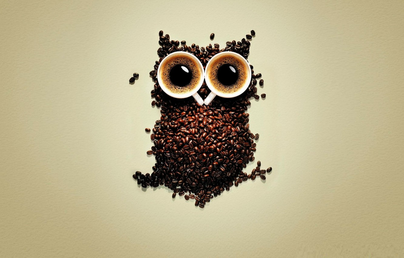 Photo wallpaper coffee, owl, coffee beans, cups of coffee