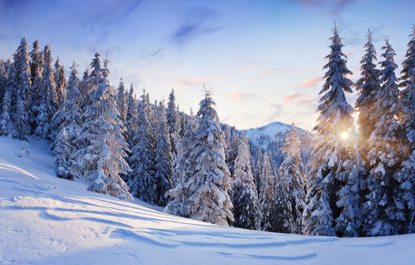 Photo wallpaper winter, the sky, the sun, snow, trees, landscape, mountains, nature, tree, ate