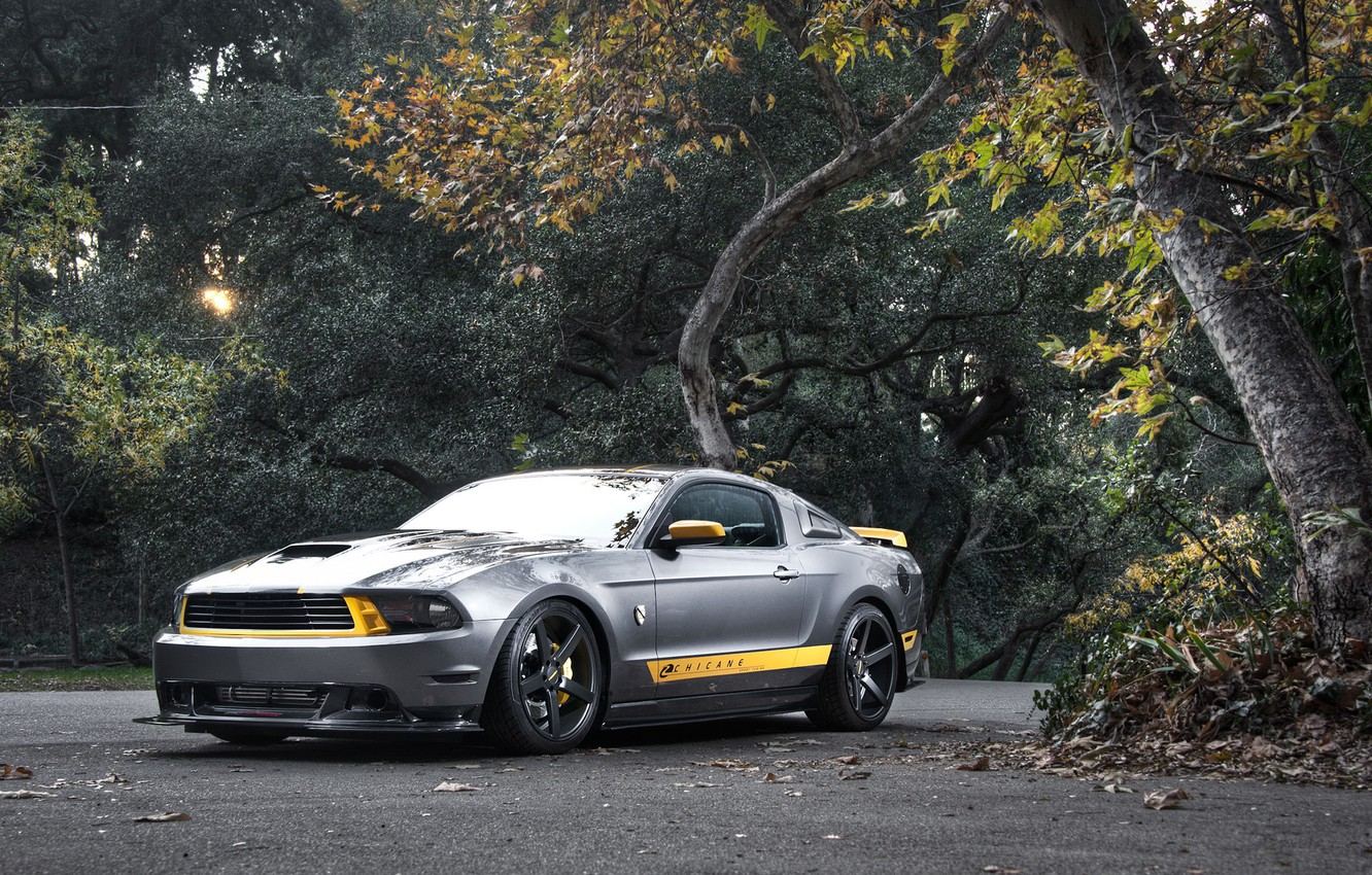 Photo wallpaper road, forest, trees, Mustang, Ford, Mustang, silver, muscle car, Ford, the front part, silvery