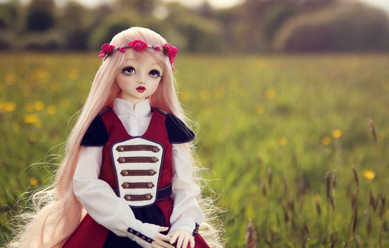Photo wallpaper field, nature, toy, doll, blonde, wreath, long hair