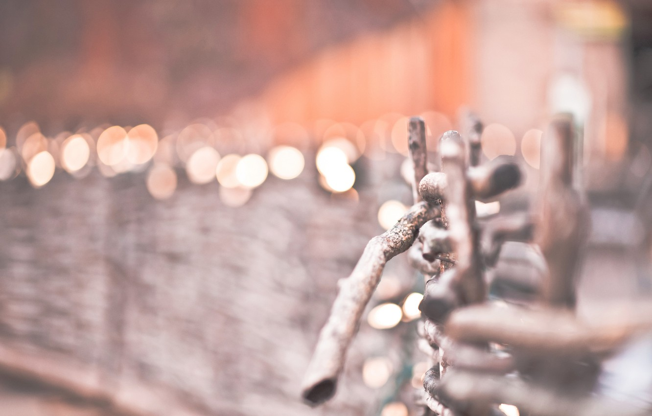 Photo wallpaper winter, macro, nature, lights, The fence, the fence, bokeh