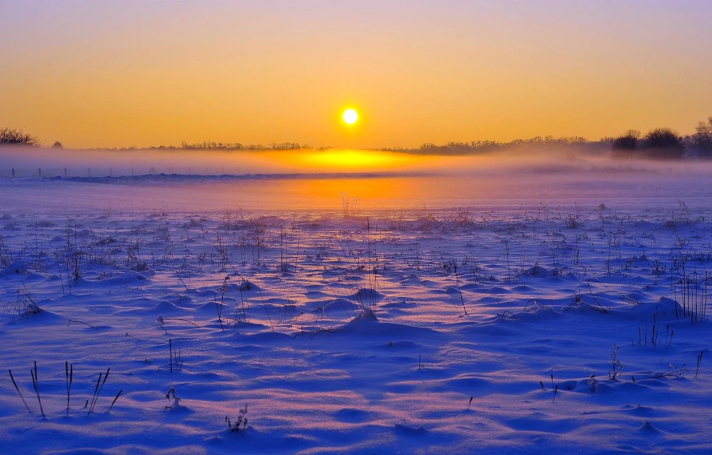 Photo wallpaper FOREST, HORIZON, The SKY, FIELD, SNOW, WINTER, SUNSET, DAWN, FOG