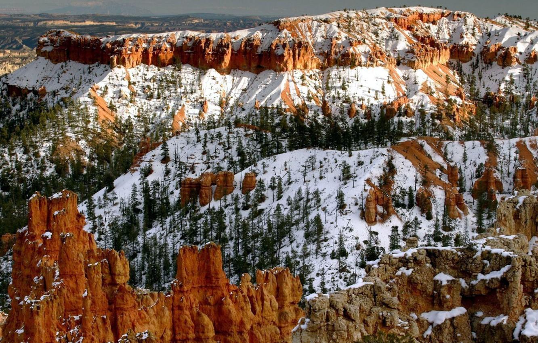 Photo wallpaper snow, trees, Mountains