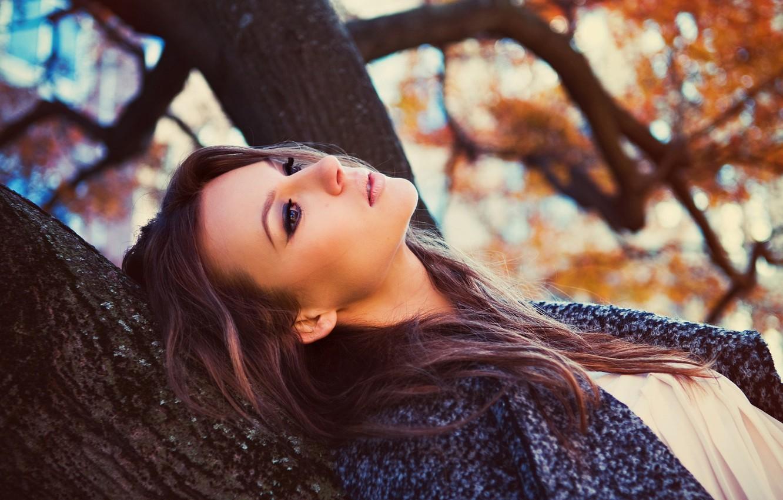 Photo wallpaper Girl, Tree, Look, Hair, Face.