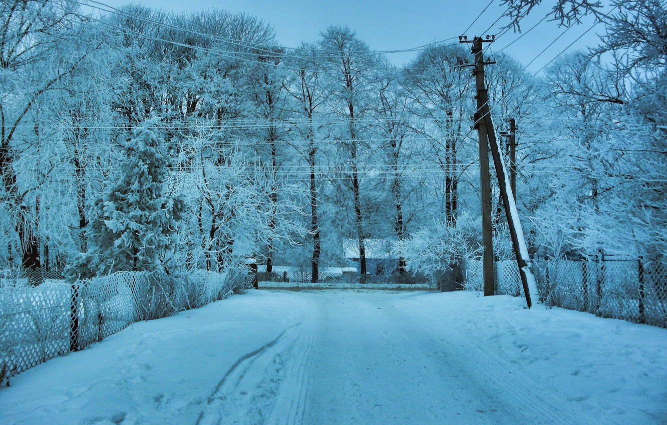 Photo wallpaper winter, road, snow, trees, landscape, wire