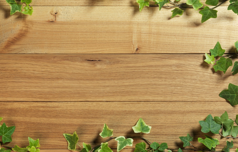 Photo wallpaper tree, texture, ivy