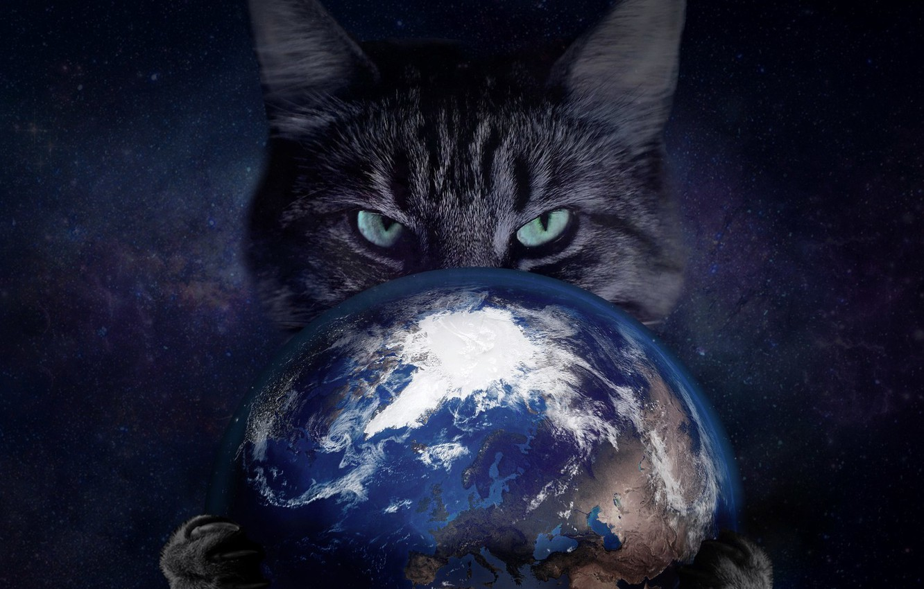 Wallpaper Cat Space Eyes Claws Earth Enslavement Images