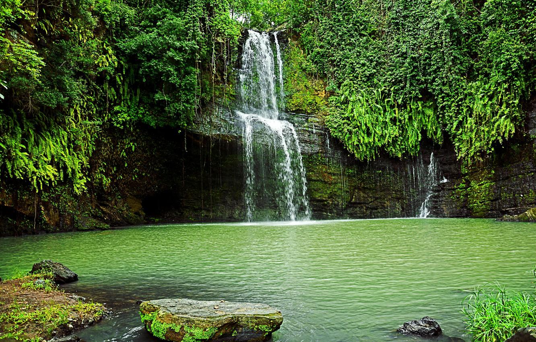 Photo wallpaper greens, rock, stones, waterfall, the bushes