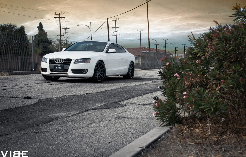 Photo wallpaper machine, Audi, vibe