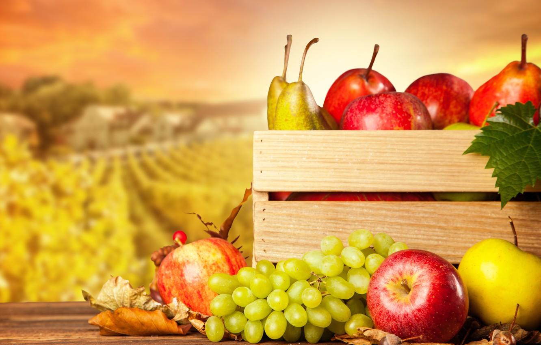 Photo wallpaper autumn, apples, harvest, grapes, fruit, box, pear