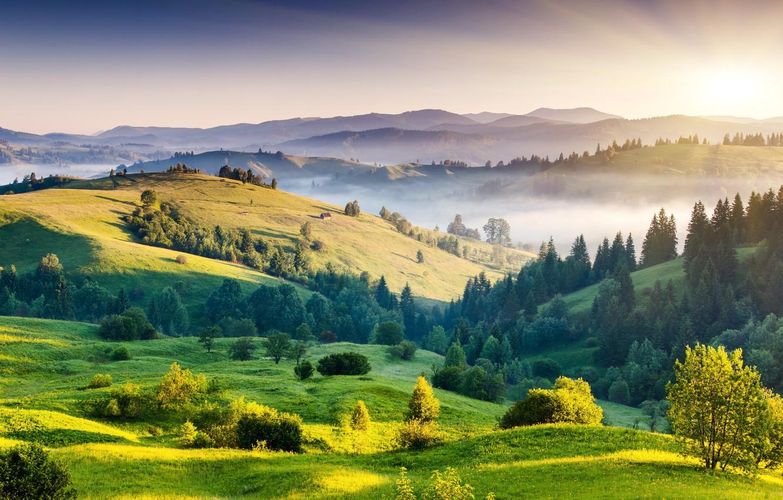 Photo wallpaper greens, the sun, trees, landscape, nature, fog, dawn, hills