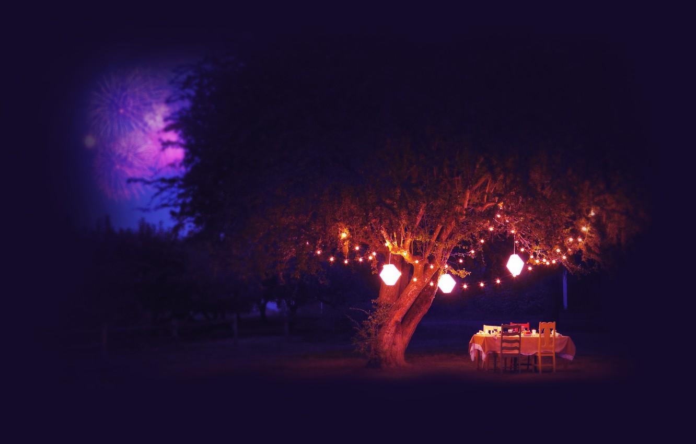 Photo wallpaper summer, night, table, tree, lights, fireworks, fireworks
