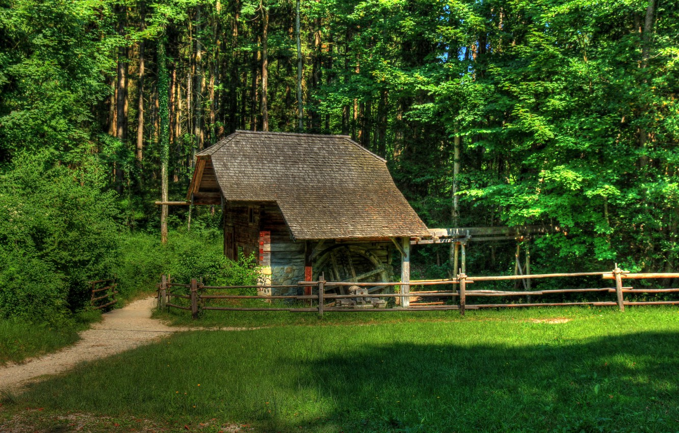 Photo wallpaper forest, grass, trees, glade, the fence, construction, Austria, path, building, Grossgmain