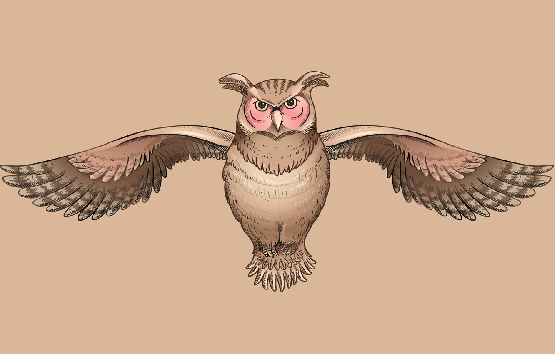Photo wallpaper owl, bird, owl, wise, cruise