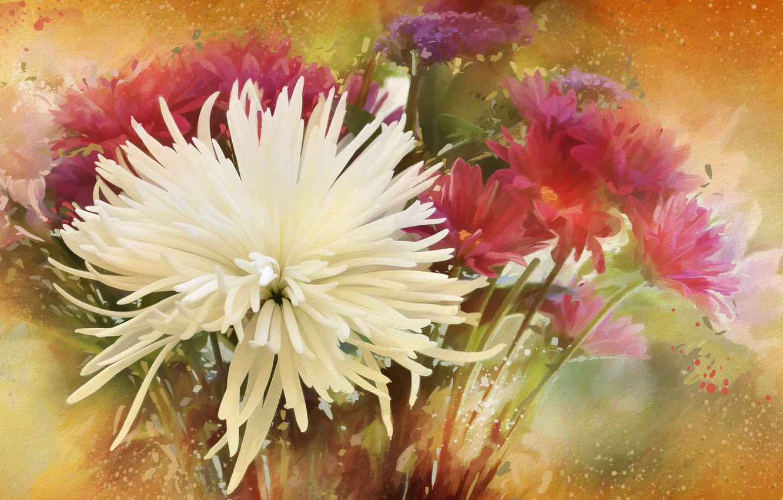 Photo wallpaper flowers, background, texture