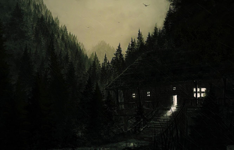 Photo wallpaper forest, birds, nature, house, rain, the bridge