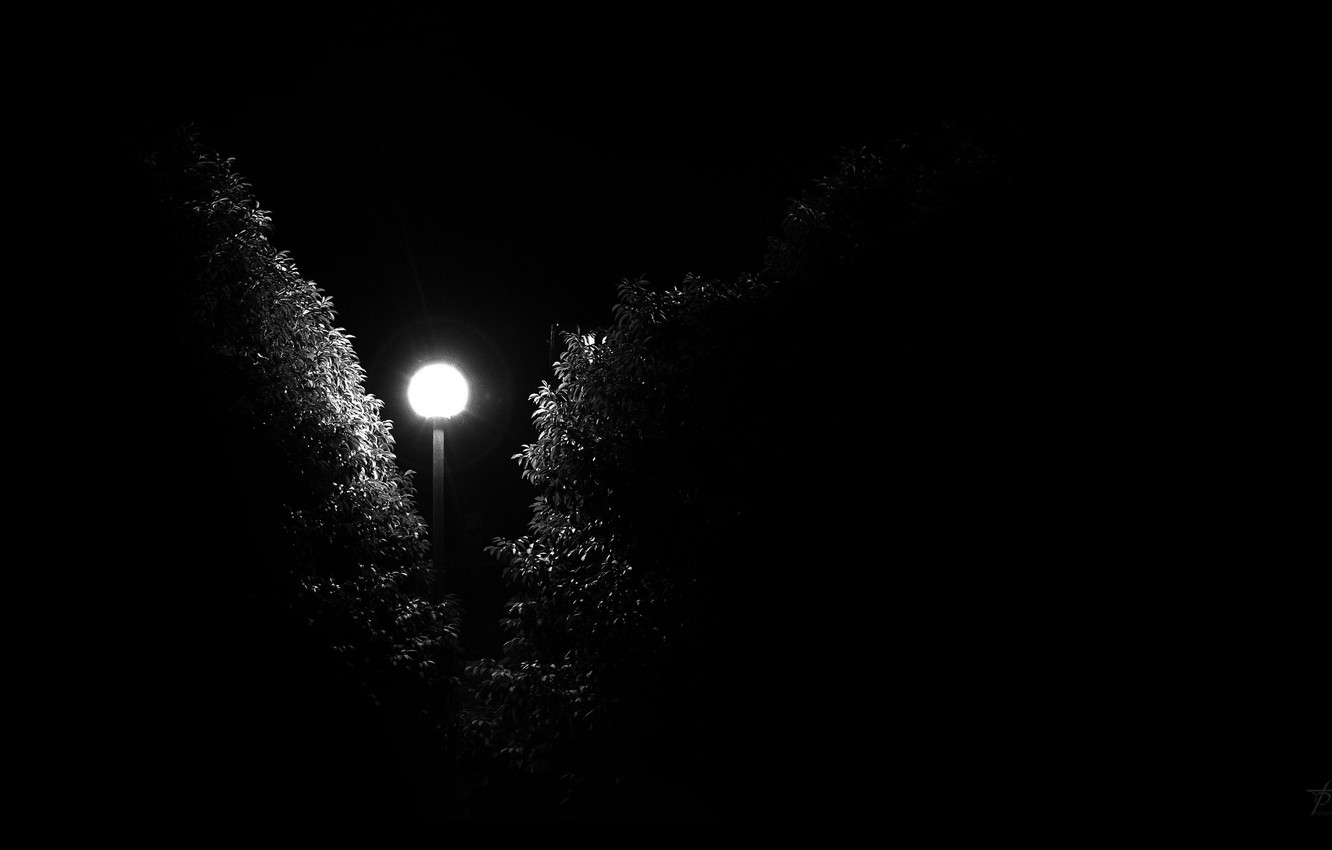 Photo wallpaper darkness, fear, street, Night, lantern