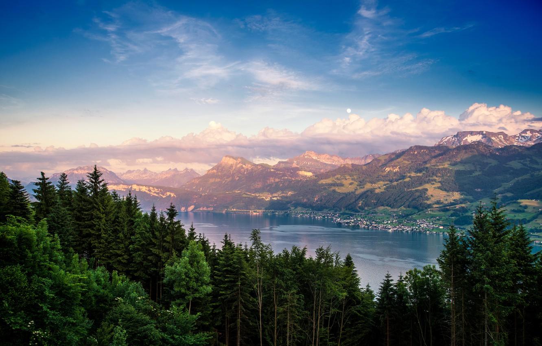 Photo wallpaper forest, mountains, nature, lake, Switzerland, Lake Zurich