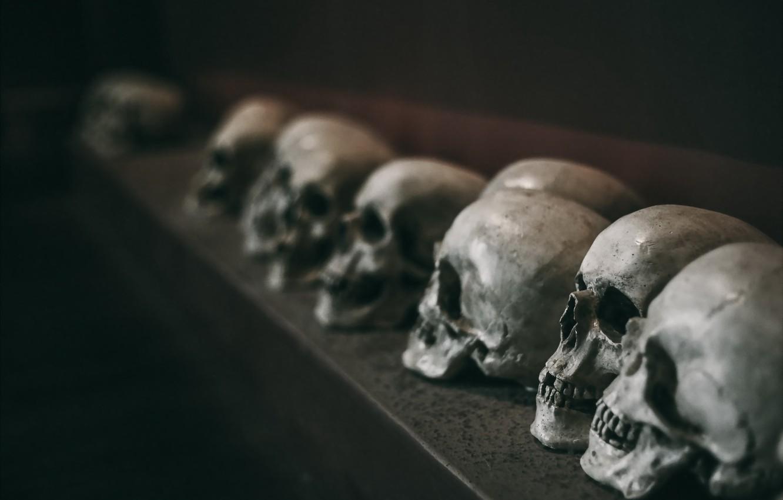 Photo wallpaper background, the darkness, skull