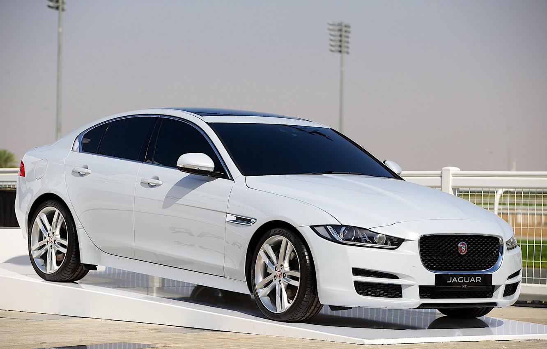 Photo wallpaper white, jaguar