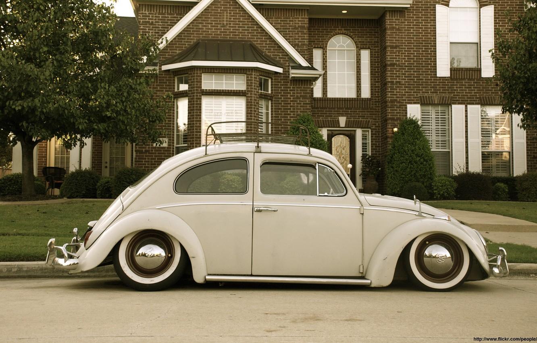 Photo wallpaper beetle, beetle, Volkswagen Beetle, Beetle, Volkswagen beetle