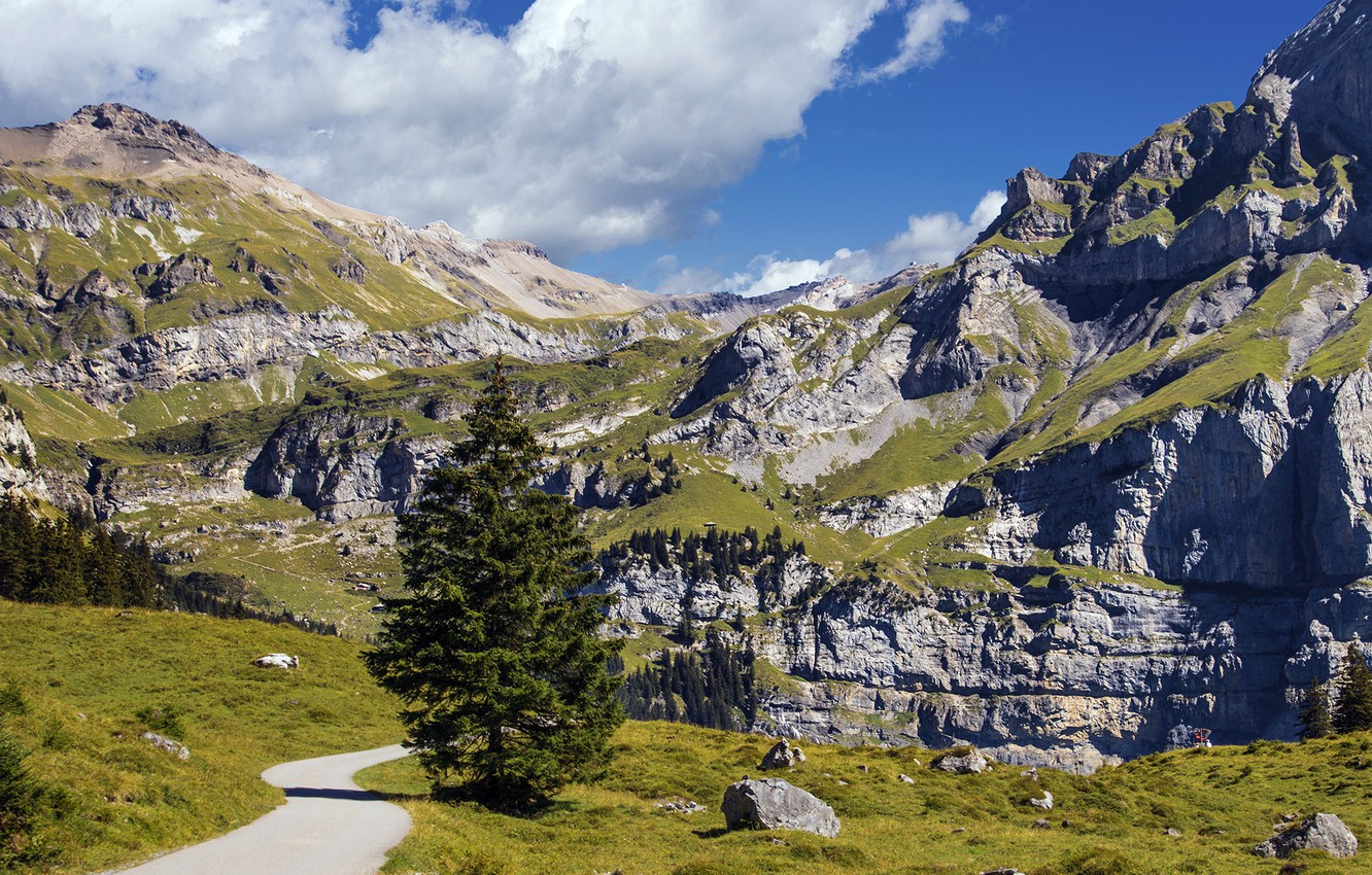 Photo wallpaper road, the sky, clouds, trees, mountains, stones, rocks, Switzerland, slope, gorge, Sunny