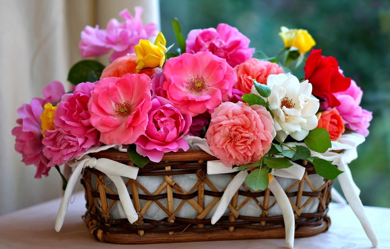 Photo wallpaper roses, petals, basket
