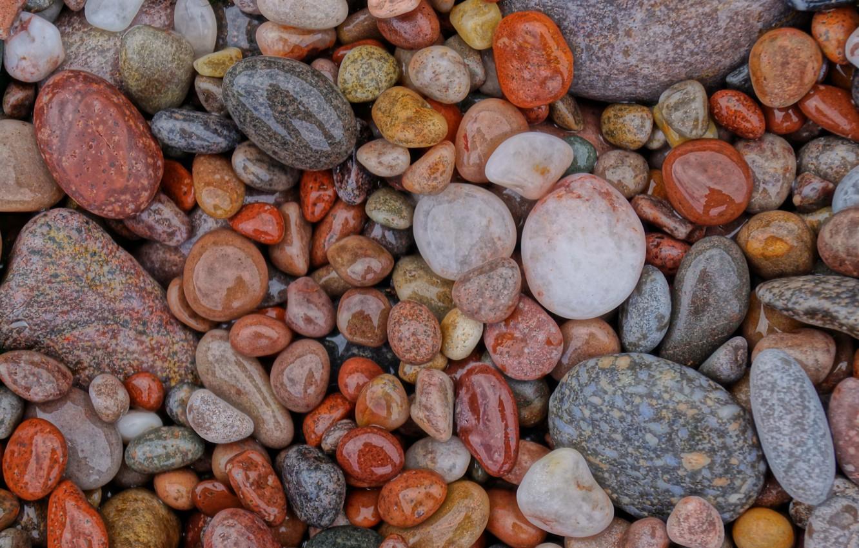 Photo wallpaper wet, stones, shiny, pebble