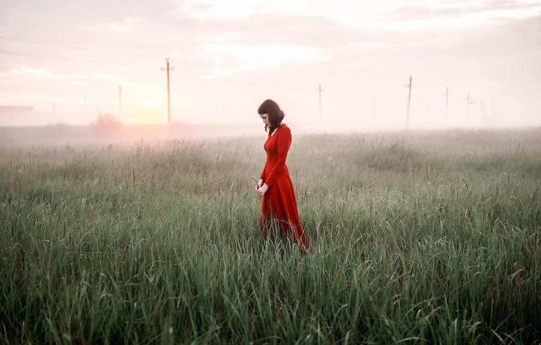 Photo wallpaper girl, fog, Rosa, morning, dress