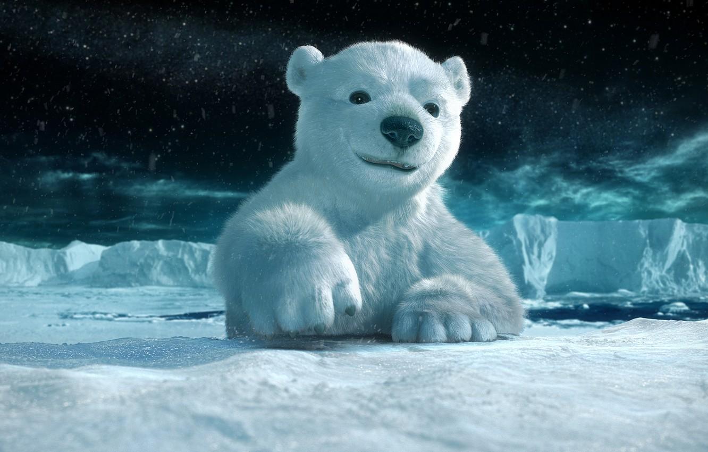 Wallpaper ice, snow, polar bear images