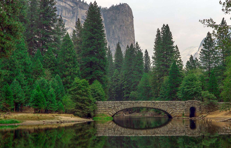 Photo wallpaper forest, trees, mountains, bridge, river, rocks