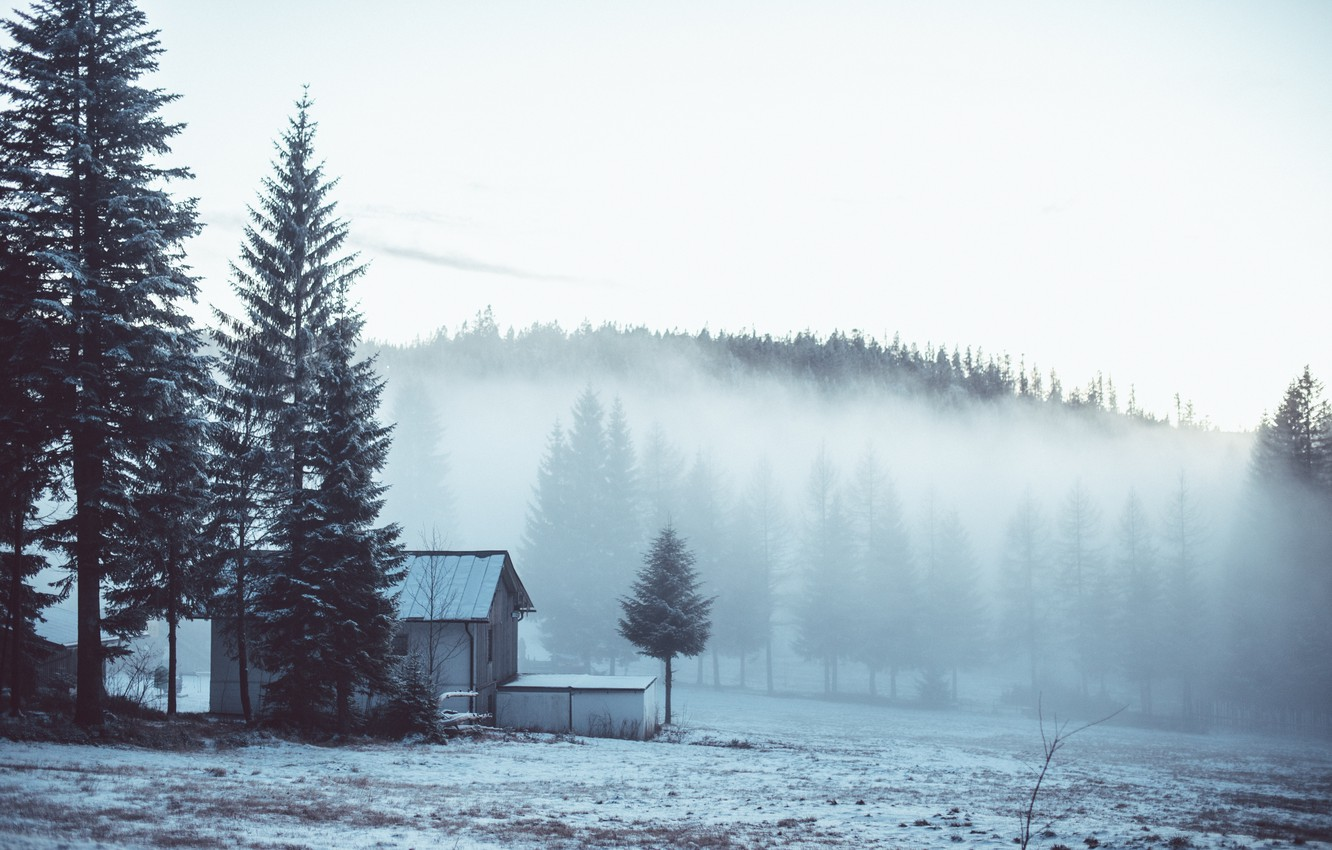 Photo wallpaper winter, forest, snow, trees, fog, house, the edge