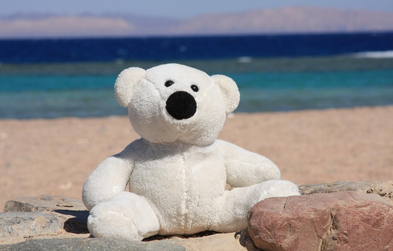 Photo wallpaper sea, summer, joy, mood, shore, toy, bear