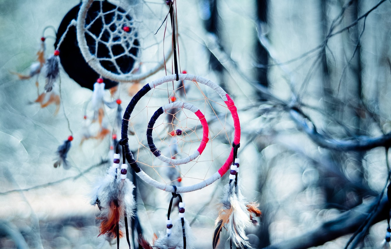 Wallpaper Branches Bokeh The Dream Catcher Images For