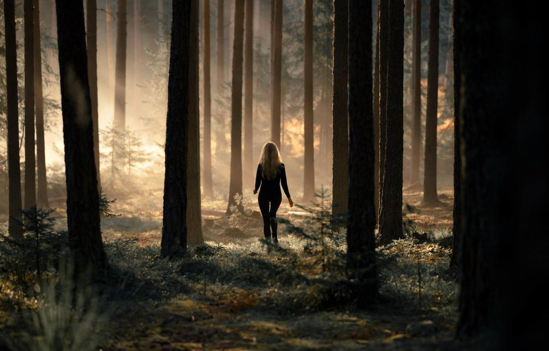 Photo wallpaper forest, nature, girls, blonde