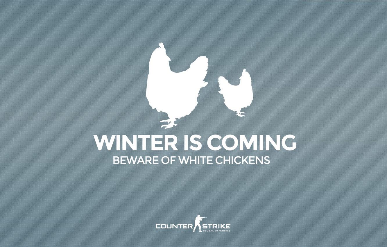 "Photo wallpaper CS GO, Counter Strike Global Offensive, Серия ""CS GO Situation"", Beware of white chickens, Winter …"