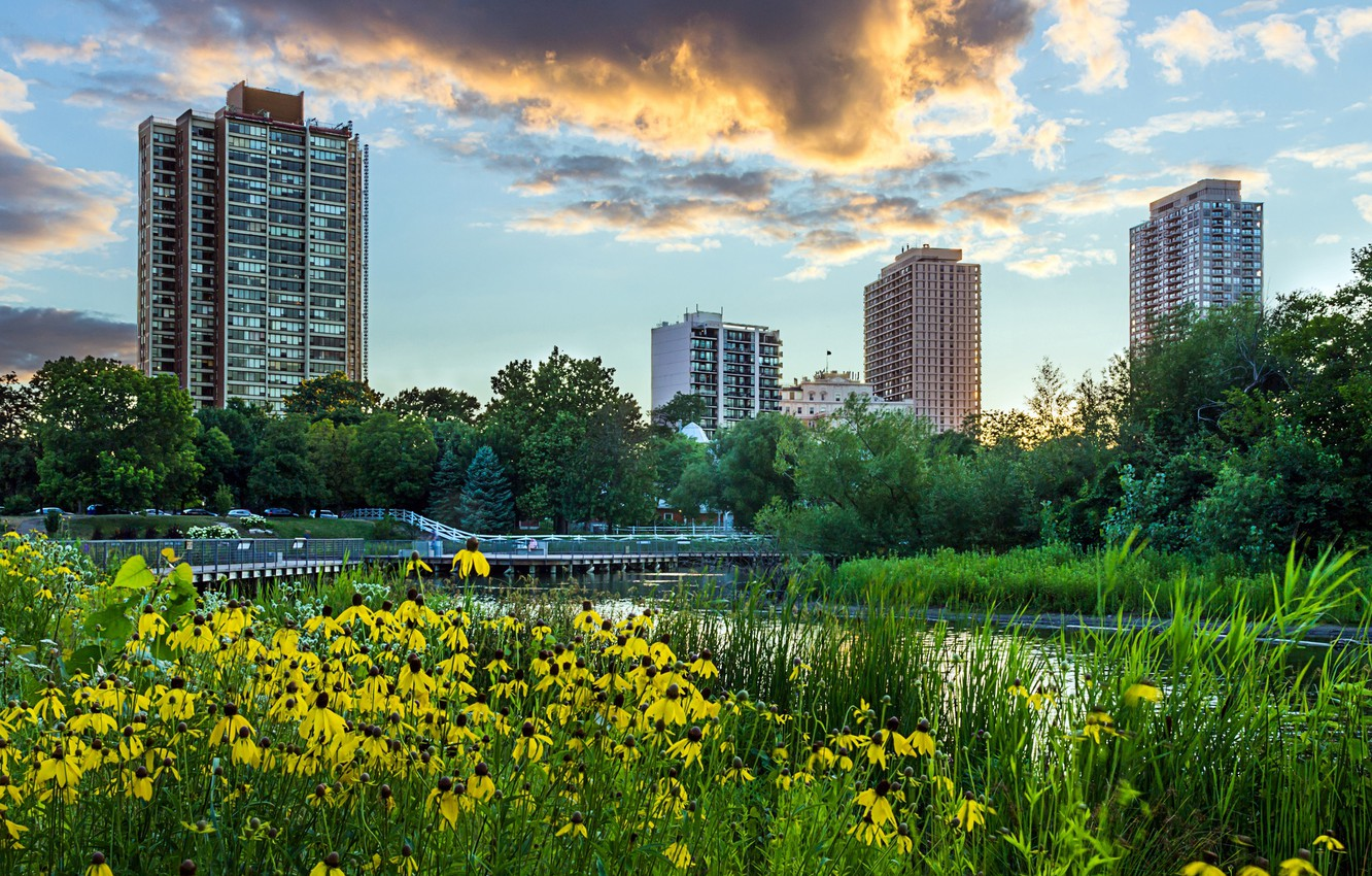 Photo wallpaper the sky, grass, clouds, trees, landscape, sunset, flowers, the city, pond, Park, skyscrapers, the evening, …
