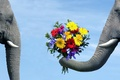 Picture BACKGROUND, PAIR, The SKY, FLOWERS, ELEPHANT, BOUQUET, LOVE, BLUE, The ELEPHANT, TRUNK, TUSKS, COURTSHIP, ELEPHANTS