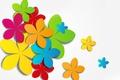 Picture flowers, petals, the volume, applique, layer