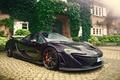 Picture McLaren, after the rain, the bushes, pavers, wet, haze, house, drops
