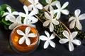 Picture flowers, drink, green tea, bowl, Jasmine