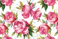 Picture flowers, paint, vector, petals, Bud