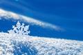 Picture snowflake, snow, winter